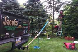 Uprighting and installing tree support system on fallen Douglas Fir tree